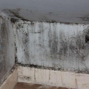 umiditate ridicata mucegai condens